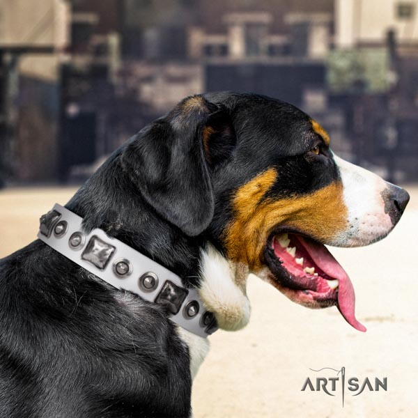 Swiss Mountain handy use genuine leather collar with studs for your pet