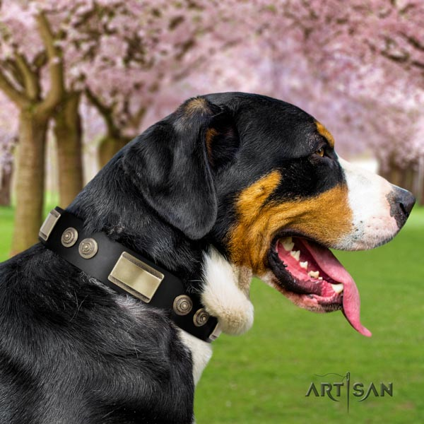 Swiss Mountain easy wearing full grain genuine leather collar with studs for your canine