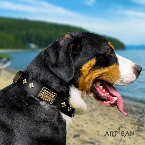 Swiss Mountain easy wearing full grain natural leather collar with decorations for your pet