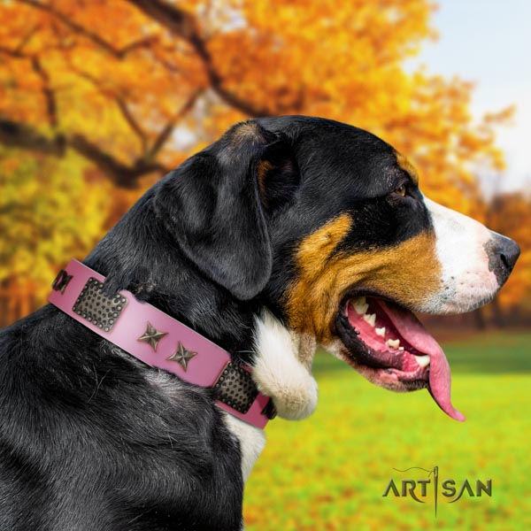 Swiss Mountain basic training leather collar with embellishments for your canine