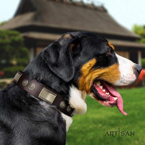 Swiss Mountain easy wearing full grain natural leather collar with studs for your doggie