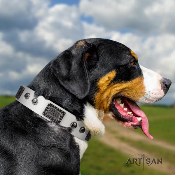 Swiss Mountain easy wearing full grain genuine leather collar with embellishments for your dog