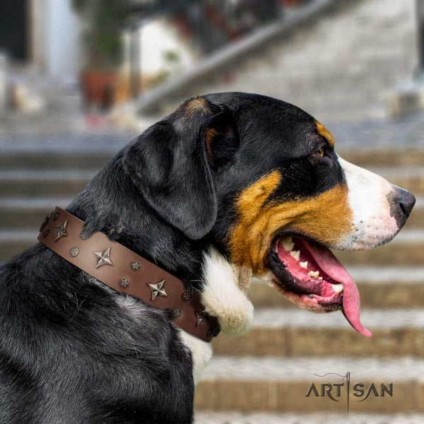 Swiss Mountain everyday use genuine leather collar with studs for your doggie