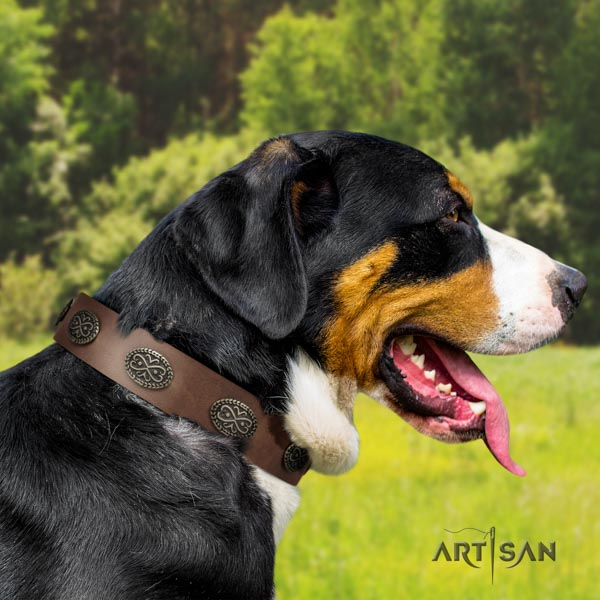 Swiss Mountain daily walking full grain genuine leather collar with adornments for your doggie