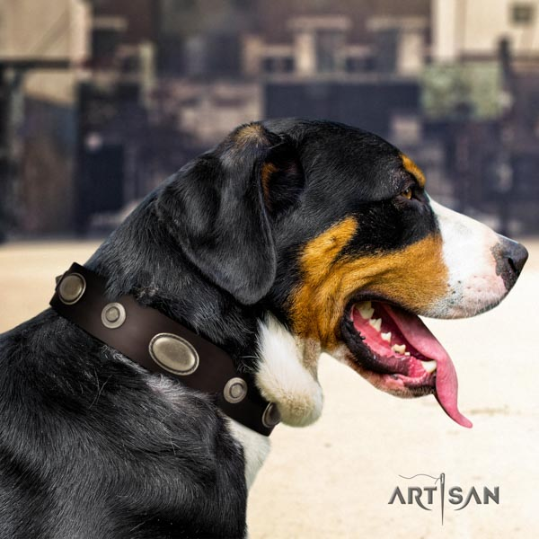 Swiss Mountain walking full grain leather collar with adornments for your dog