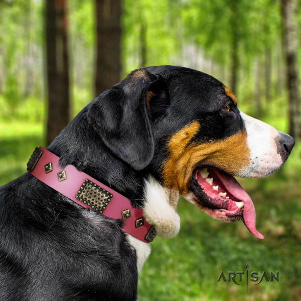 Swiss Mountain stylish walking full grain leather collar with studs for your dog