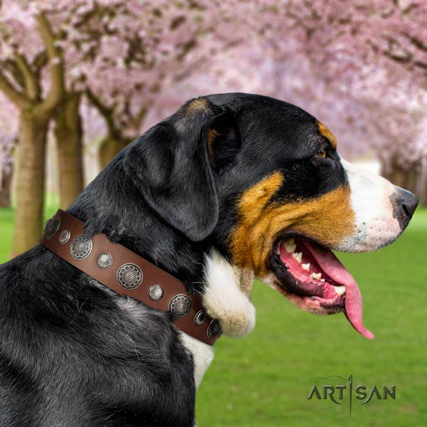 Swiss Mountain easy wearing genuine leather collar with adornments for your pet