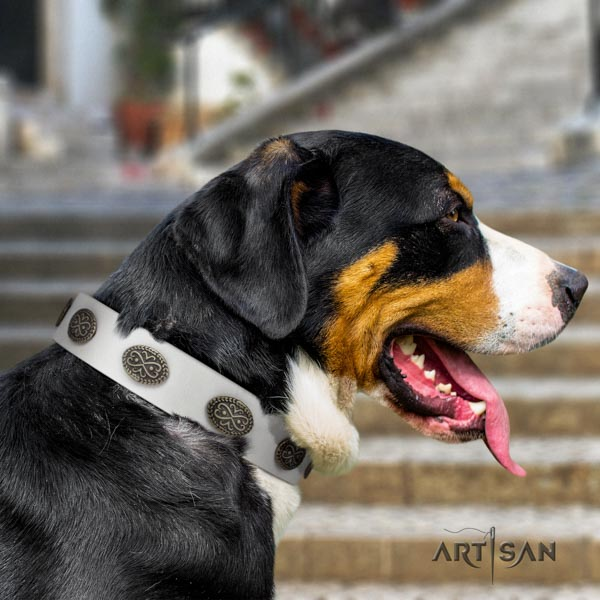 Swiss Mountain basic training leather collar with adornments for your four-legged friend