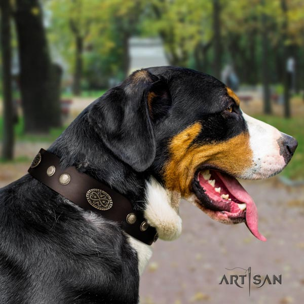 Swiss Mountain stylish walking full grain genuine leather collar with decorations for your pet