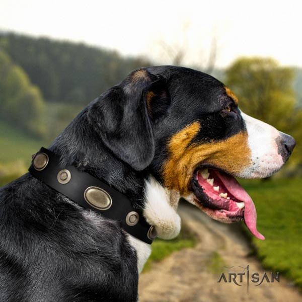 Swiss Mountain fancy walking full grain natural leather collar with adornments for your canine