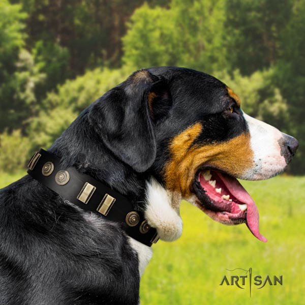 Swiss Mountain daily use genuine leather collar with decorations for your four-legged friend