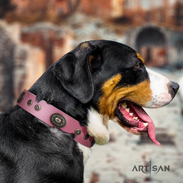 Swiss Mountain daily use natural leather collar with decorations for your dog