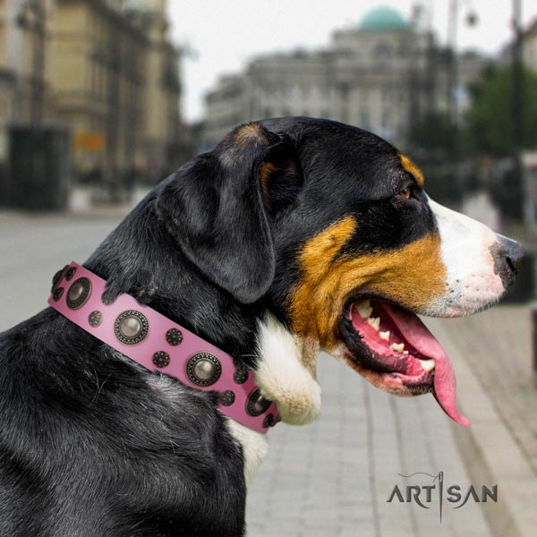 Swiss Mountain daily use full grain leather collar with studs for your doggie