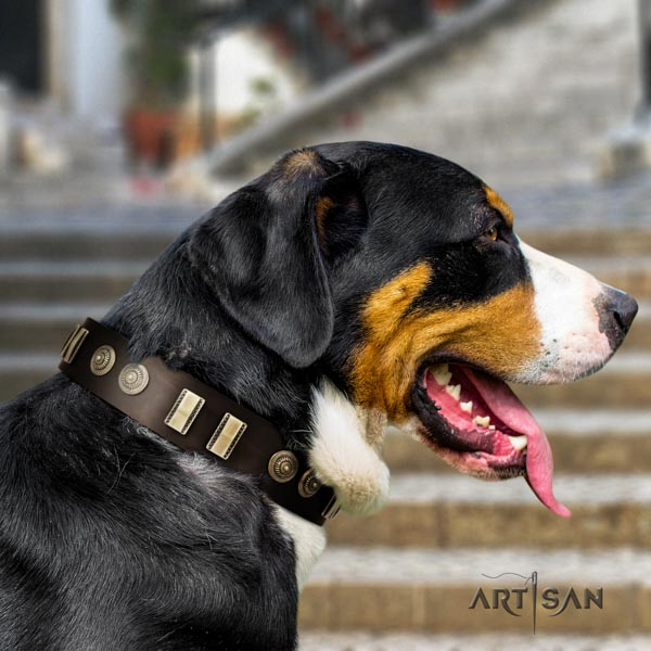 Swiss Mountain handy use natural leather collar with decorations for your four-legged friend