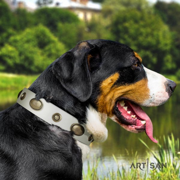 Swiss Mountain daily walking natural leather collar with adornments for your dog