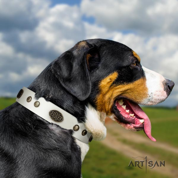 Swiss Mountain easy wearing full grain natural leather collar with embellishments for your four-legged friend