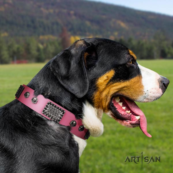Swiss Mountain everyday walking full grain genuine leather collar with decorations for your four-legged friend