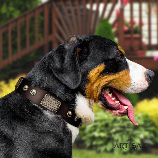 Swiss Mountain daily use full grain natural leather collar with adornments for your pet