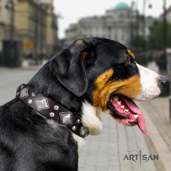 Swiss Mountain basic training full grain genuine leather collar with adornments for your canine