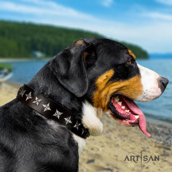 Swiss Mountain daily use natural leather collar with decorations for your canine