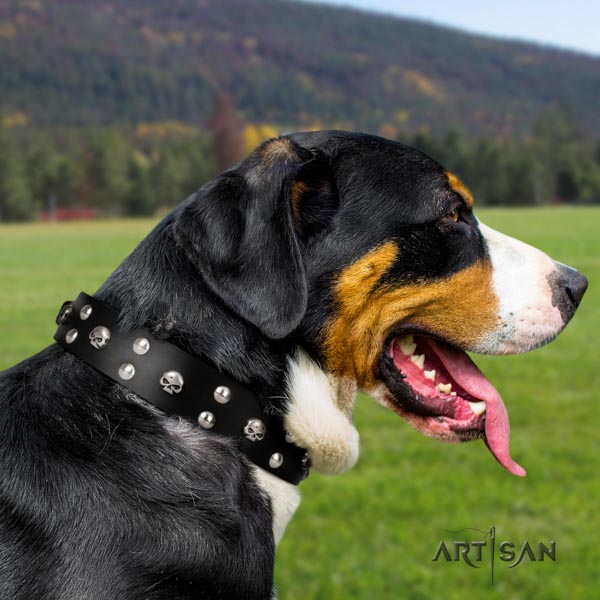 Swiss Mountain daily walking full grain genuine leather collar with decorations for your four-legged friend