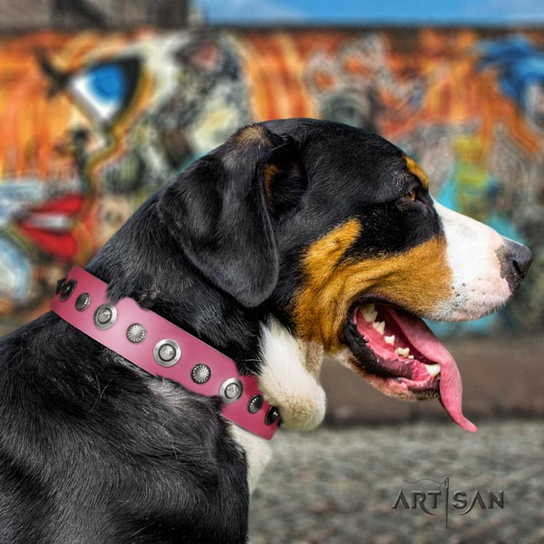 Swiss Mountain walking leather collar with studs for your doggie