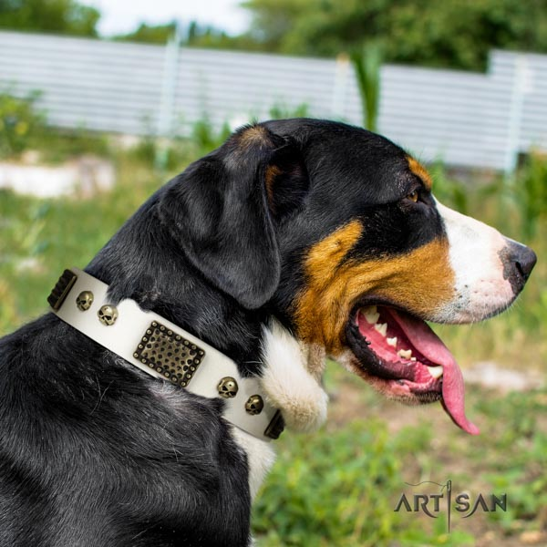 Swiss Mountain walking full grain natural leather collar with studs for your four-legged friend