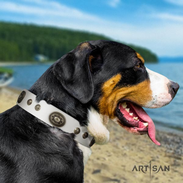 Swiss Mountain comfortable wearing full grain natural leather collar with adornments for your four-legged friend