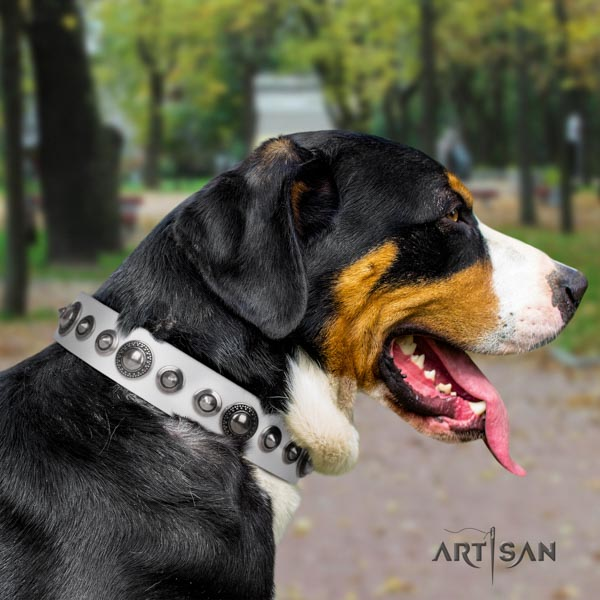 Swiss Mountain handy use leather collar with adornments for your pet
