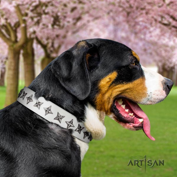 Swiss Mountain everyday walking full grain leather collar with embellishments for your doggie