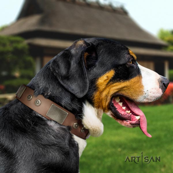 Swiss Mountain everyday use full grain genuine leather collar with studs for your four-legged friend