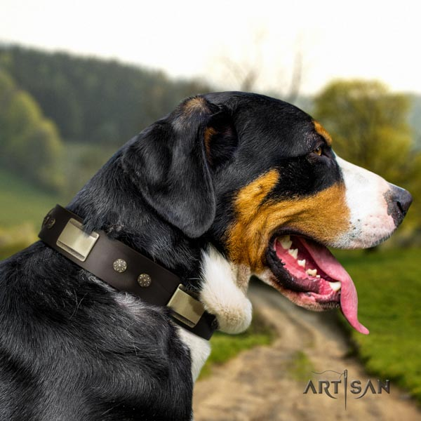 Swiss Mountain daily use natural leather collar with adornments for your pet