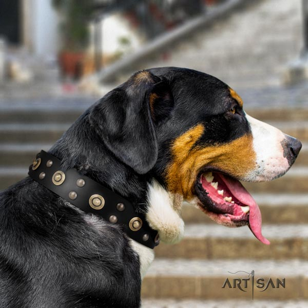 Swiss Mountain everyday walking full grain leather collar with embellishments for your dog