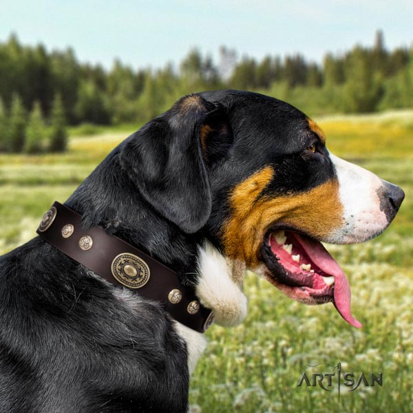 Swiss Mountain comfortable wearing full grain natural leather collar with embellishments for your pet