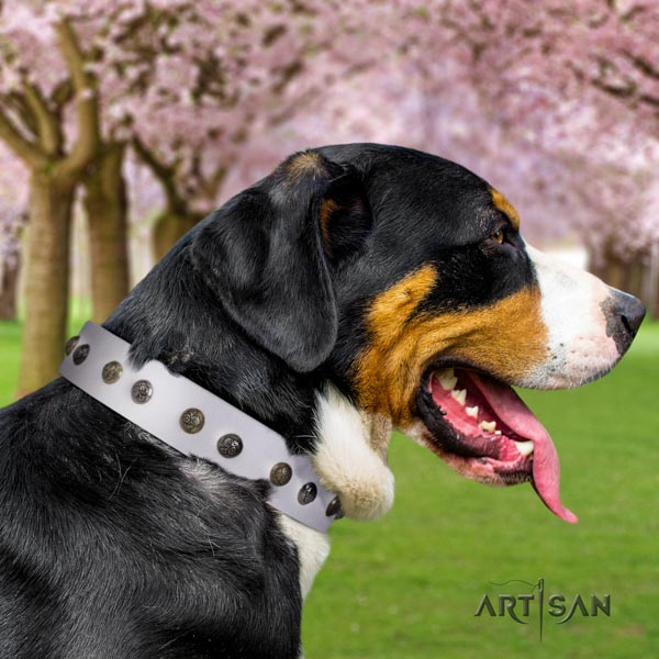 Swiss Mountain comfortable wearing natural leather collar with adornments for your four-legged friend
