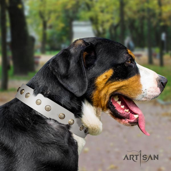 Swiss Mountain fancy walking leather collar with embellishments for your canine