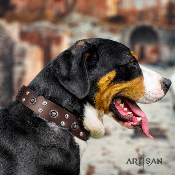 Swiss Mountain walking natural leather collar with adornments for your dog