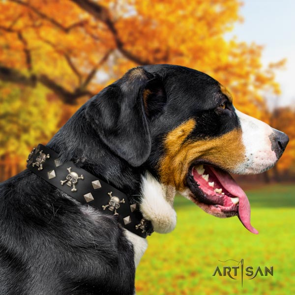 Swiss Mountain everyday walking genuine leather collar with studs for your doggie