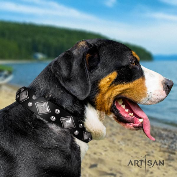 Swiss Mountain everyday walking genuine leather collar with embellishments for your pet