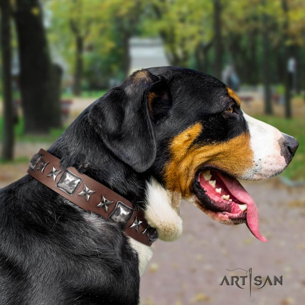 Swiss Mountain everyday use full grain leather collar with embellishments for your doggie