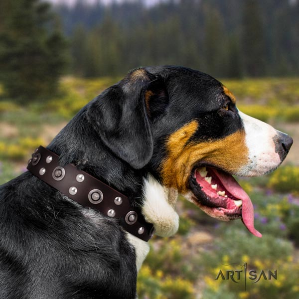 Swiss Mountain comfortable wearing genuine leather collar with decorations for your doggie