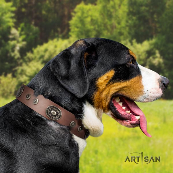 Swiss Mountain basic training genuine leather collar with embellishments for your four-legged friend