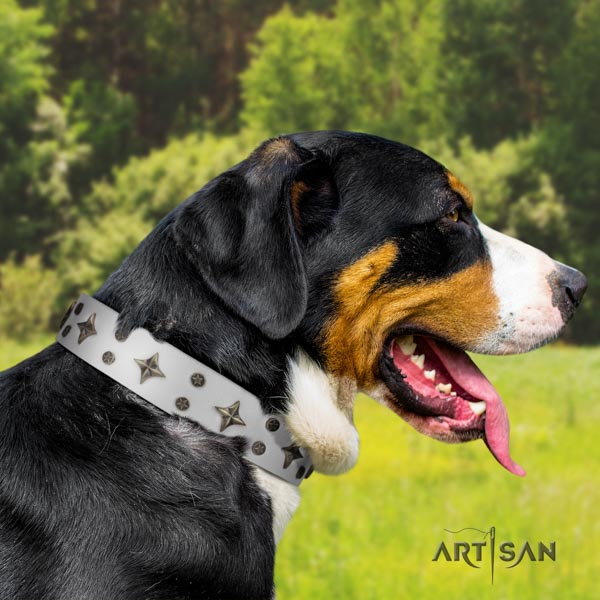 Swiss Mountain fancy walking full grain leather collar with decorations for your four-legged friend