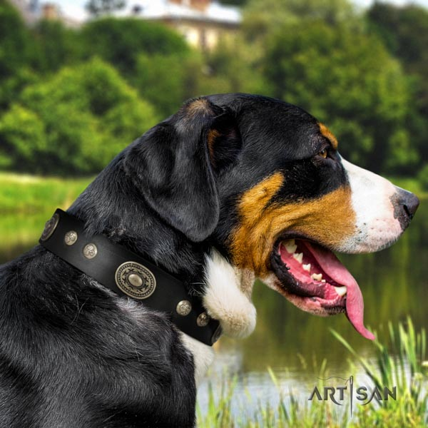 Swiss Mountain daily use natural leather collar with decorations for your pet