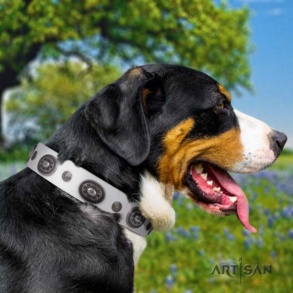 Swiss Mountain everyday walking full grain natural leather collar with decorations for your doggie