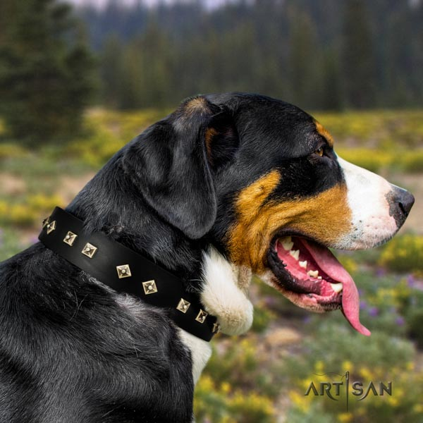 Swiss Mountain handy use leather collar with decorations for your canine