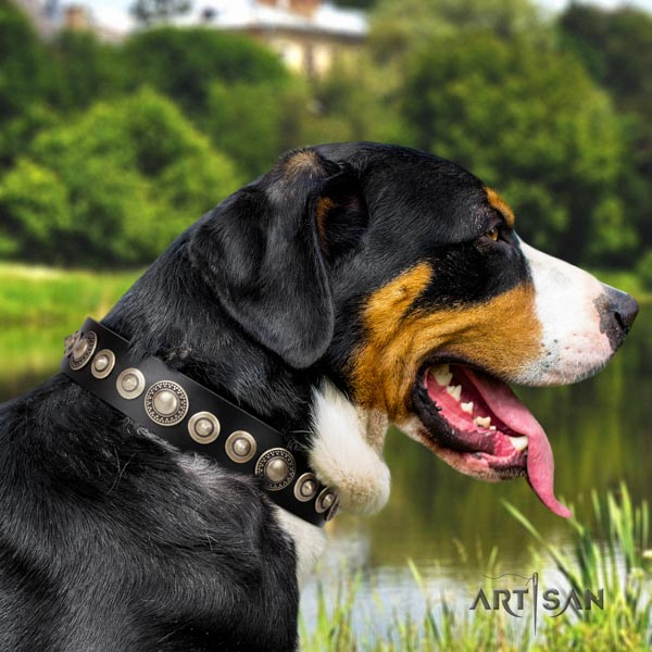 Swiss Mountain walking full grain leather collar with studs for your dog