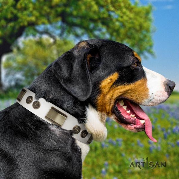 Swiss Mountain everyday use natural leather collar with studs for your canine