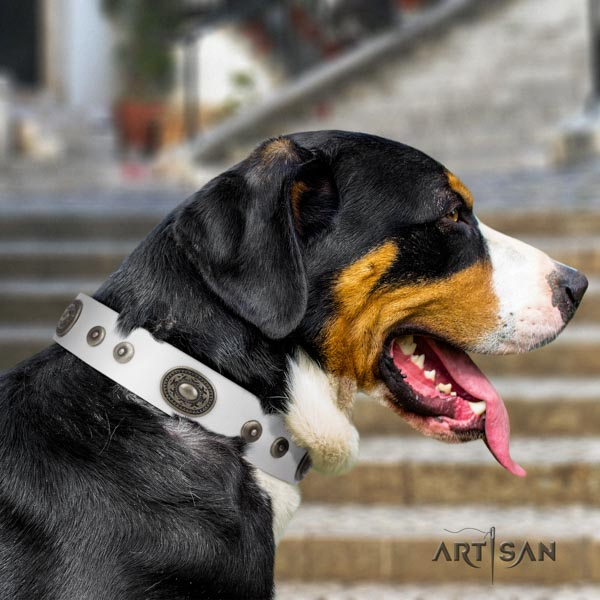 Swiss Mountain comfy wearing full grain leather collar with decorations for your pet