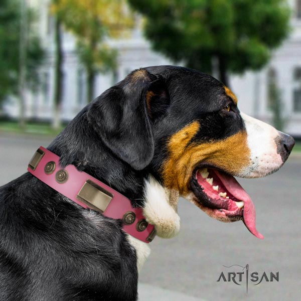 Swiss Mountain daily walking full grain natural leather collar with studs for your doggie
